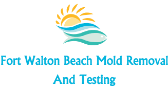 For Walton Beach Mold Removal And Testing